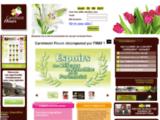 Ouvrir une franchise de fleuriste en expansion