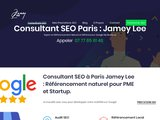 Consultant SEO et Référencement local sur Paris : Expert Google My Business
