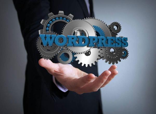 description-consultant-wordpress