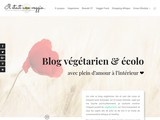 Blog bio et écolo lifestyle : véganisme, mode, bien-être et recettes