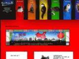 KDJ webdesigner développeur free-lance Nantes