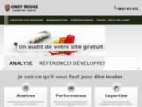 Référenceur web en Guadeloupe et Martinique
