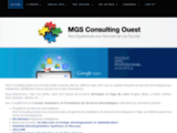 SSII, Société Informatique, MGS Consulting