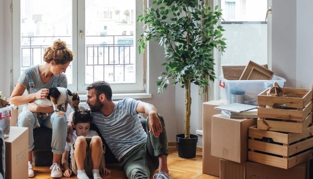 déménagement collaboratif